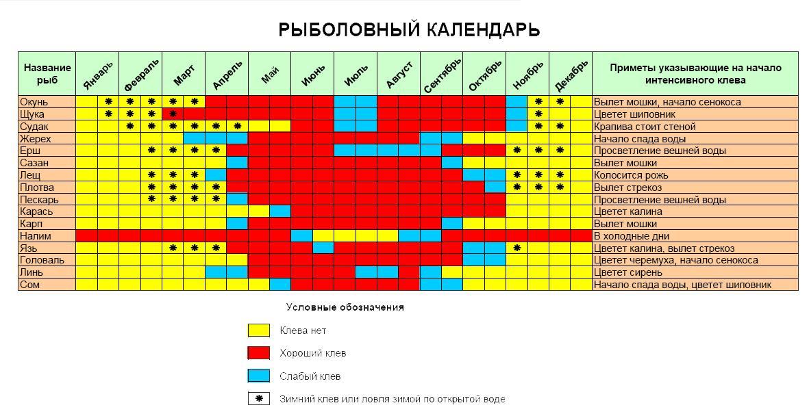 календарь клева в ростовской области