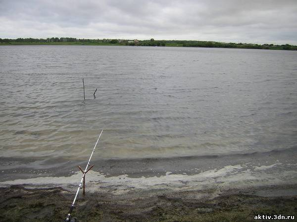 Озеро Лисье. Курганская область.