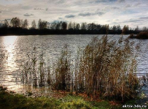 Озеро Монастырское. Курганская область.