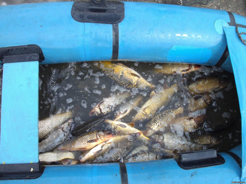 рыбалка на байнауше челябинск