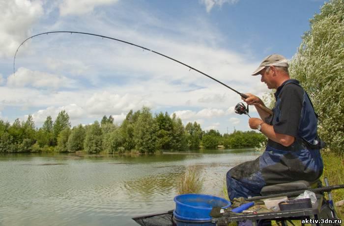 ловля рыбы с фидером